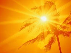 FL-Sun